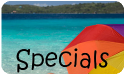 Savvy Travel Boulder Specials